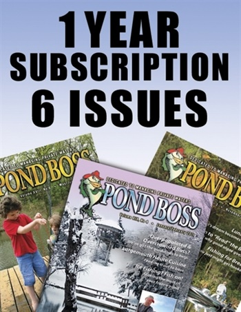 New Subscriber Special - 1 Year Subscription