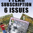 1 Year New Subscription